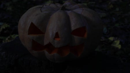 anão : Scary glowing pumpkin. Autumn holiday Halloween. Stock Footage