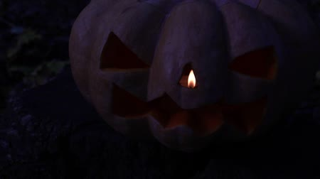 anão : Jacks lantern. Halloween, scary glowing pumpkin. Stock Footage