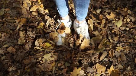 buty : Golden autumn, a woman kicking yellow leaves. Legs go on autumn leaves. Wideo
