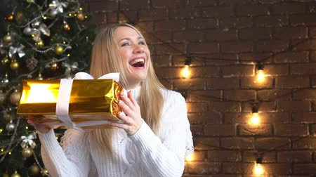 New year holiday, a young woman enjoys a Christmas gift.