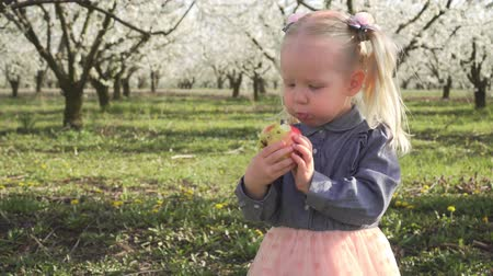 apple park : A small child is eating an apple in a flowered garden.
