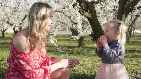 apple park : Family, spring, woman and child in the blooming garden. Stock Footage