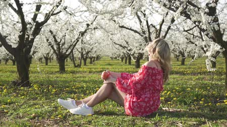 кусаться : Spring, flowering trees, a young woman eating an apple in a fruit garden. Стоковые видеозаписи
