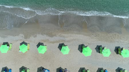 slunečník : Aerial view: tourists sunbathe on the beach. Sun umbrellas, the sea and the sandy beach. Dostupné videozáznamy