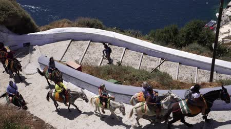 Санторини : Greece, Santorini - May 2019. Tourists climb the stairs on donkeys. Стоковые видеозаписи