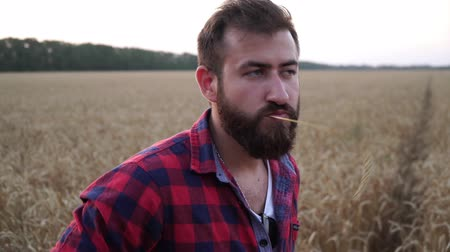 agronomie : Portrait of a young male farmer on a background of a field of wheat.
