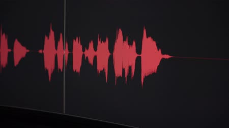 hang : Voice sound wave graph. Recording Studio, sound wave.