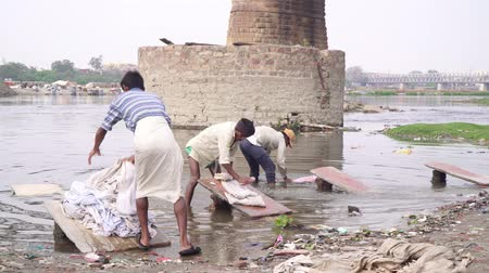 lavanderia : Agra, India, - March 2020. Men wash clothes on a river in India. Stock Footage