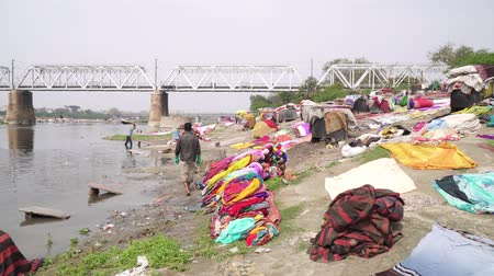 честный : Agra, India, - March 2020. Large laundry on the river in India in Agra. Стоковые видеозаписи