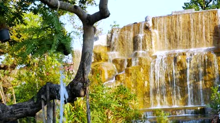 musgo : waterfall in garden