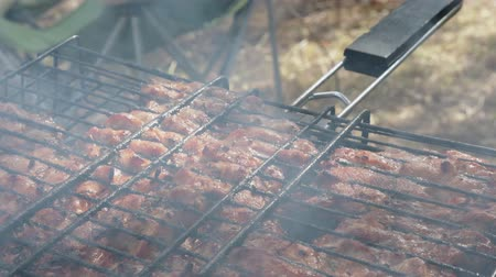 unhealthy eating : Meat on the barbecue grill