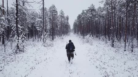 Man with a backpack walks in the forest in winter. Aerial drone flight footage. Backpacking winter hike
