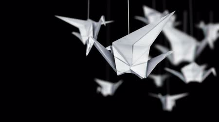 ptak : origami in the room
