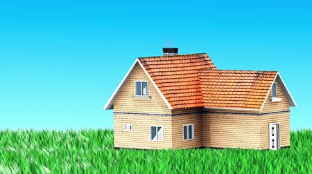 real : House Built on the grass for use in presentations, manuals, design, etc. Stock Footage