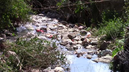 rzeka : A polluted river in Nepal Wideo