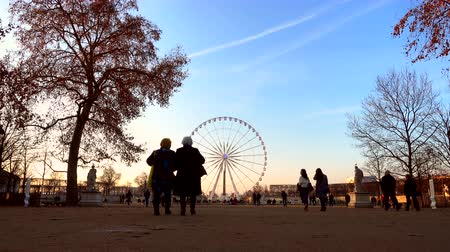 PARIS, FRANCE - CIRCA DECEMBER 2016: The ferris wheel on Concorde Square as seen from the Tuileries garden. Stok Video