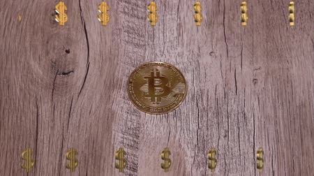 mijnwerker : Bitcoin digitale valuta Stockvideo