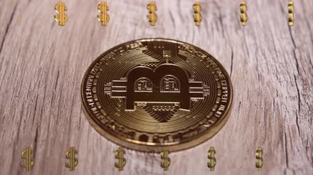 бумажник : Bitcoin digital currency Стоковые видеозаписи