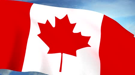 kanadai : Canadian Flag Closeup Waving Against Blue Sky Seamless Loop CG