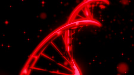 dna strings : DNA spinning RNA double helix slow tracking shot closeup depth of field DOF red Stock Footage