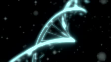 cellen : DNA RNA dubbele helix slow Volgshot close scherptediepte DOFwhite Stockvideo