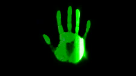 paketleme : Hand scanner handprint fingerprint palm password id green Stok Video