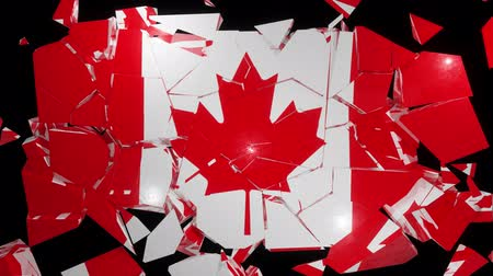 enflasyon : Canadian Canada collapse flag country dollar 4k Stok Video
