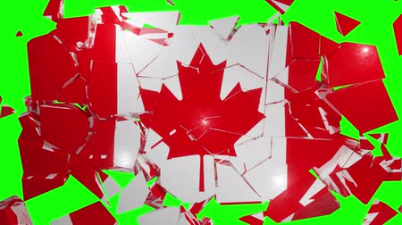 inflação : Canadian Canada collapse flag country dollar 4k Vídeos