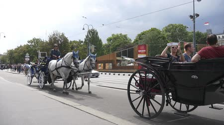 hackney carriage : Horse-drawn carriage passes Rathaus
