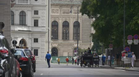 hackney carriage : Riding horse drawn carriage - the most popular attraction in Vienna