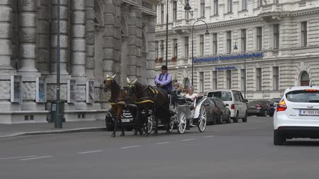 hackney carriage : Tourists ride horse drawn carriage in Vienna Stock Footage