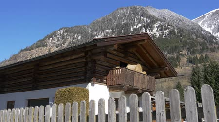 hayloft : Barn with hay in the Austrian mountains