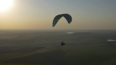 Paraglider flying with birds