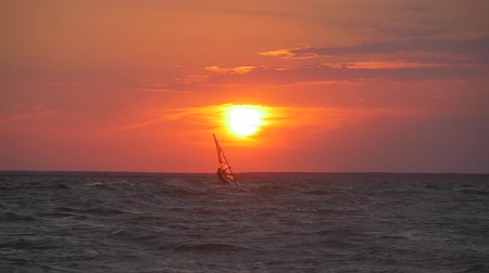 Windsurfing at sunset Стоковые видеозаписи