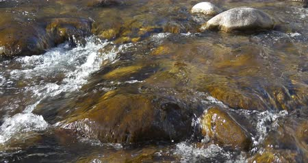 roaring : Boulders in a stormy mountain river Stock Footage