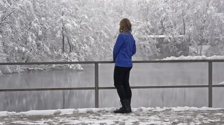 leegte : Girl is standing on the shore of a winter lake Stockvideo