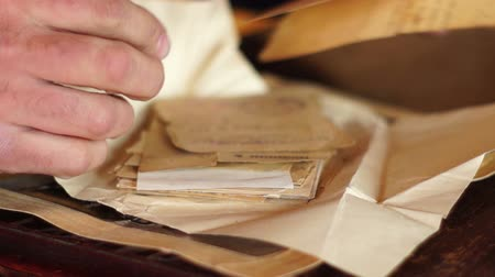 atrás : Man viewing ancient documents Stock Footage