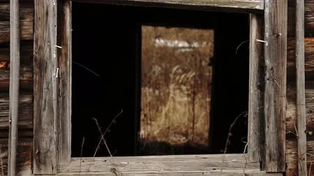 View through the glassless window inside a wooden abandoned house Wideo