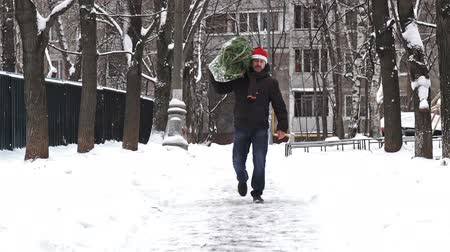 упакованный : Man in a red Santa hat carries a Christmas tree packed in a grid just bought at the Christmas market. Slow motion. Стоковые видеозаписи