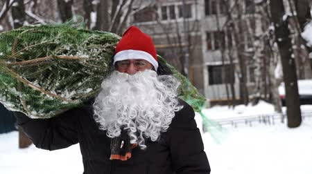 Close up of a man wearing a red Santa hat and a white beard carries home a Christmas tree packed in a grid