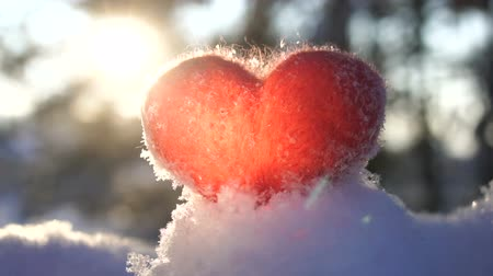 peluş : Red woolen heart on the snow and backlighted by the sun. Slow motion