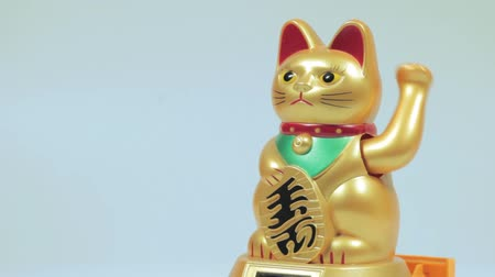kotki : Lucky cat doll Wideo
