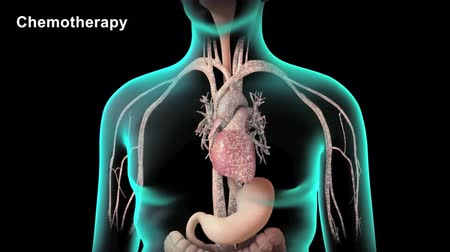ledvina : Medical 3d animation of the beating heart