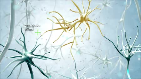 axon : Journey through a neuron.