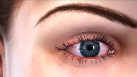 sc : eye animation 22 cut 004