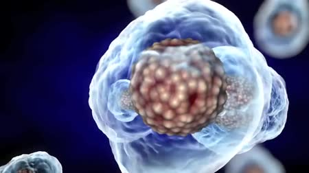 oncology : 3D Rendered Animation Of Cell Replication
