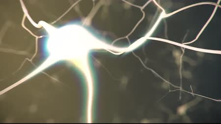 nerves : Journey through a neuron.