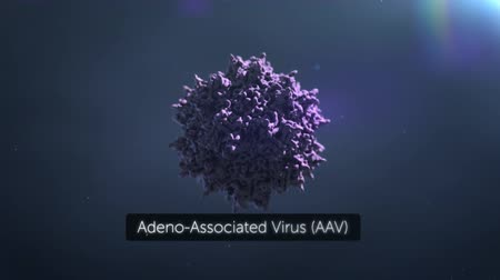 mutation : Microscope View Of Virus