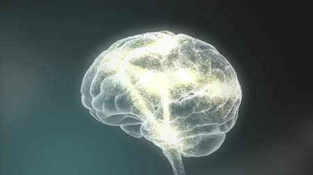 lobe : Human head with brain. Electric impulses. Biology. Loopable. 3d human with a brain. Stock Footage