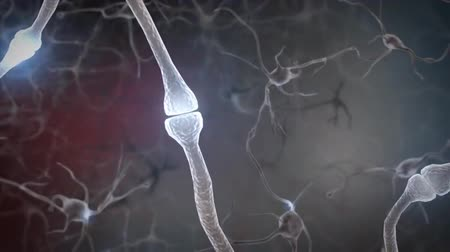 neuronal : 4K Intro Brain Impulses. Neuron System. Transferring Pulses And Generating 4K.From neurons during synapsis to a human head. Loopable. Biology. Stock Footage